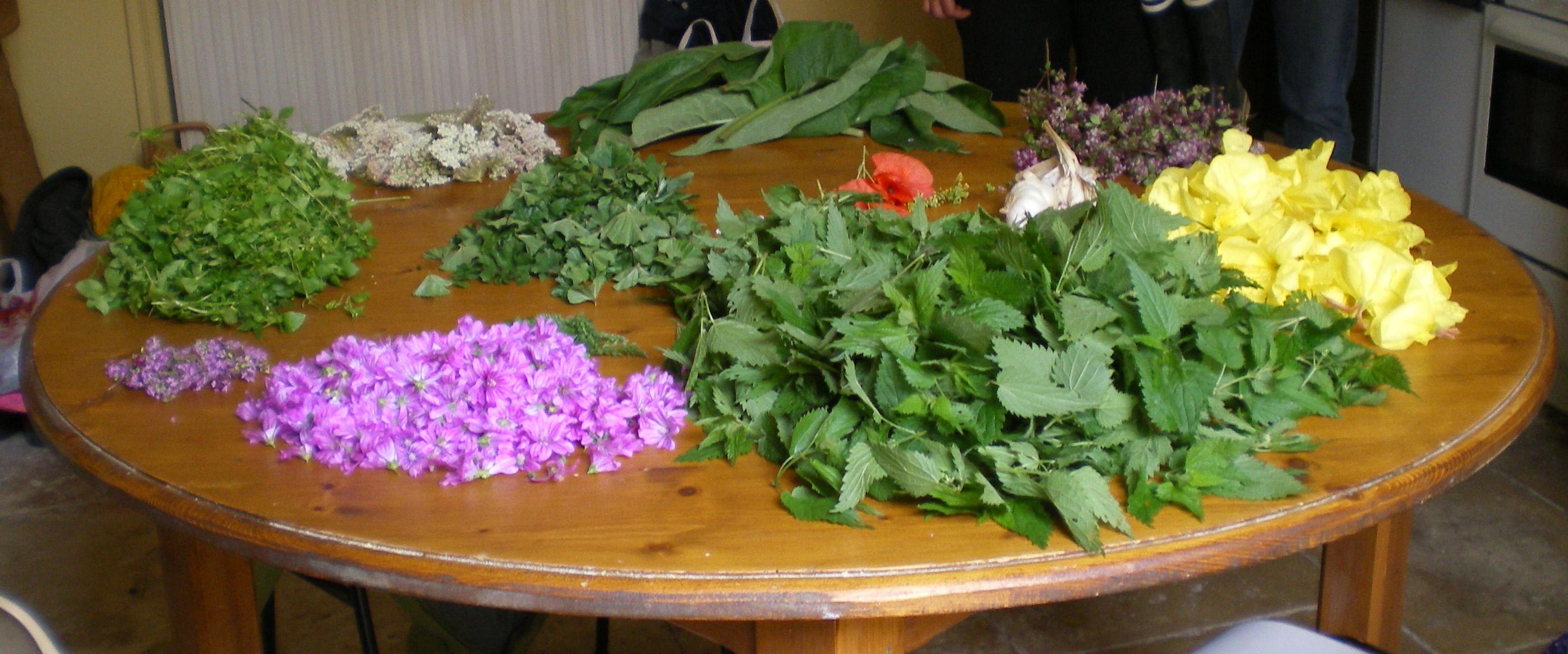 gastro table fleur