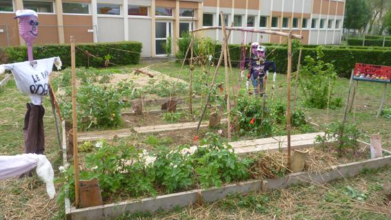 Jardin d 39 isis potager animation enfant cole jardinage for Creation jardin potager